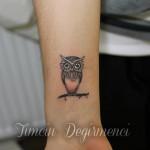 Baykuş Dövme